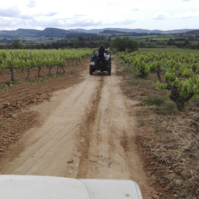 4x4 visit to a winery